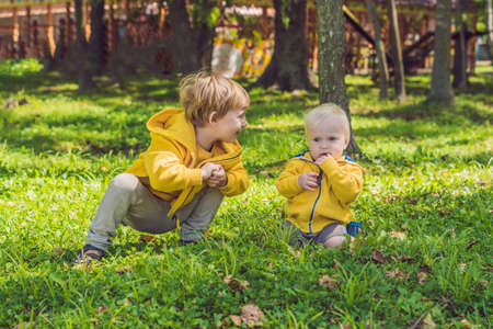 Two happy brothers in yellow sweatshirts in the autumn park. Foto de archivo