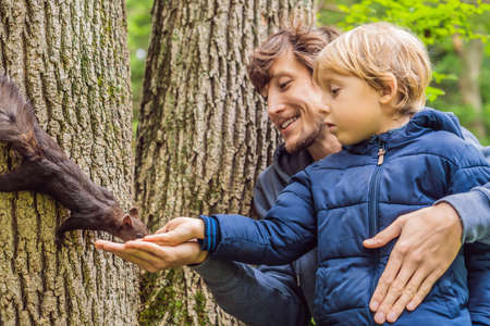 Dad and son feed a squirrel in the park