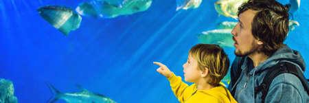 Father and son look at the fish in the aquarium in oceanarium