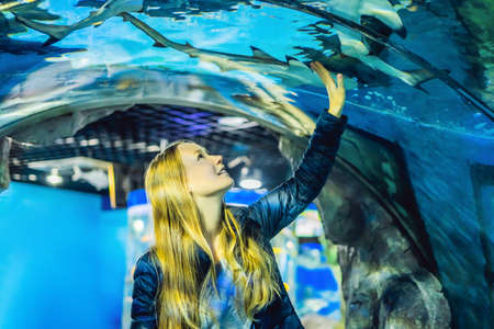 A young woman looks at fish in a tunnel in the oceanarium Stok Fotoğraf