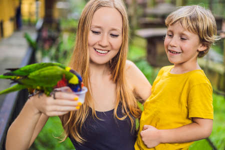 Mom and son feed the parrot in the park. Spending time with kids concept