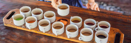 Tasting various types of coffee and tea, including coffee Luwak BANNER, long format Stock Photo