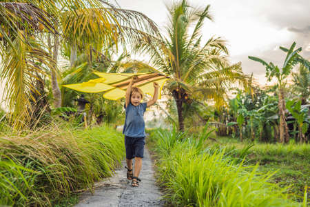 Boy launch a kite in a rice field in Ubud, Bali Island, Indonesia
