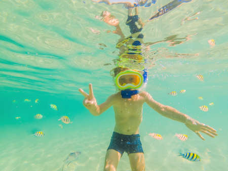Underwater nature study, boy snorkeling in clear blue sea