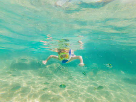 Underwater nature study, boy snorkeling in clear blue sea