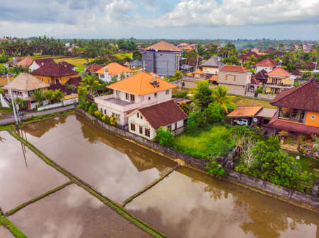 The rice fields are flooded with water. Flooded rice paddies. Agronomic methods of growing rice in the fields. Flooding the fields with water in which rice sown. View from drone