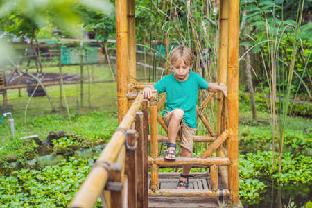 The boy at the bamboo playground. Eco-friendly playground