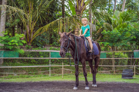 Boy horseback riding, performing exercises on horseback Stockfoto