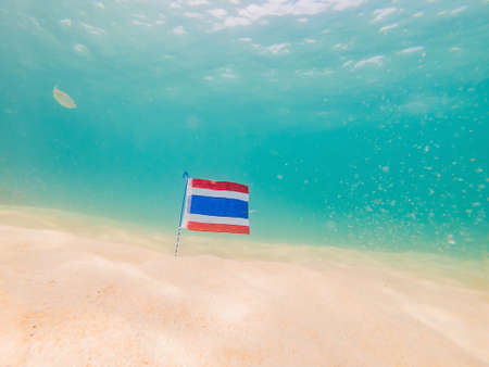 Beautiful tropical fish on the white sand beach. with the flag of Thailand. Travel to Thailand concept