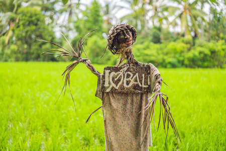 Scarecrow on the rice terrace with a sign I love Bali Stock Photo