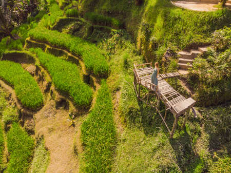 Rice Terrace Aerial Shot. Image of beautiful terrace rice field.