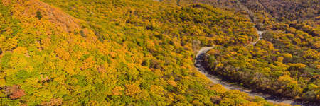 Aerial view of road in beautiful autumn forest at sunset. Banco de Imagens - 129828010