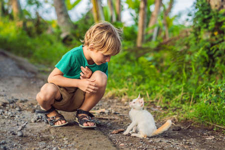 Little boy and little kitten playing outside