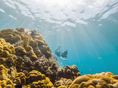 Happy man in snorkeling mask dive underwater with tropical fishes in coral reef sea pool. Travel lifestyle, water sport outdoor adventure, swimming lessons on summer beach holiday. Aerial view from the drone
