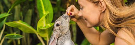 Mujer sosteniendo un conejo. Prueba de cosméticos en animal conejo. Concepto libre de crueldad animal y detener el abuso animal BANNER, FORMATO LARGO Foto de archivo