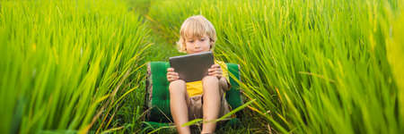 Happy child sitting on the field holding tablet. Boy sitting on the grass on sunny day. Home schooling or playing a tablet BANNER, LONG FORMAT 版權商用圖片