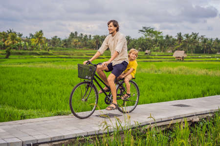 Father and son ride a bicycle on a rice field in Ubud, Bali. Travel to Bali with kids concept