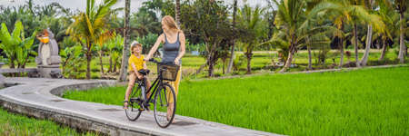 Mother and son ride a bicycle on a rice field in Ubud, Bali. Travel to Bali with kids concept. BANNER, LONG FORMAT