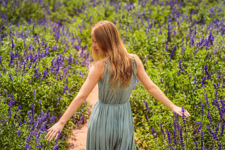 Beautiful woman relaxing in lavender field watching on sunset