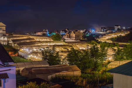 Night scene of a valley in Dalat with the greenhouses to plant flowers and vegetables 写真素材