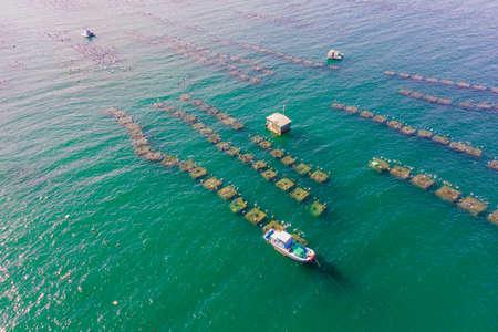 Lots of marine farms in a blue sea water. Sea farming concept