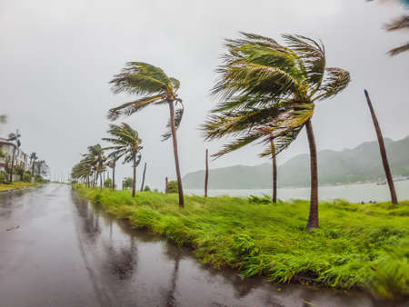 Tropical storm, heavy rain and high winds in tropical climates