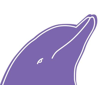 vector illustrationof a dolphin