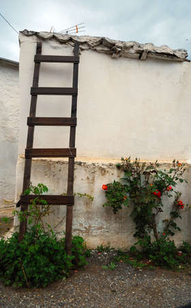 wooden ladder and roses in the yard of an old greek house Stock Photo