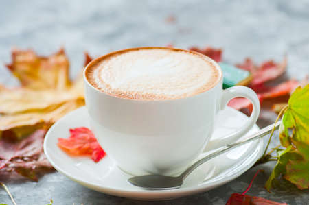 One cup of cappuccino on a gray background with maple leaves 写真素材