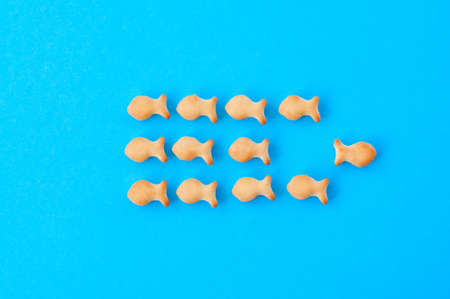 Crunchy fish crackers on a blue background. Stock Photo