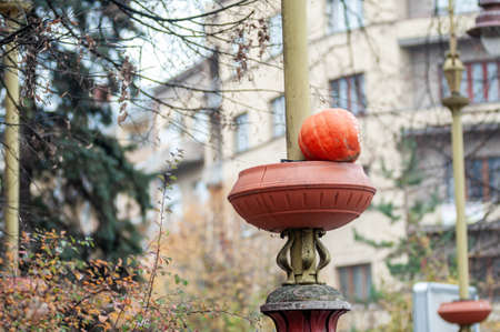 Pumpkin on a lantern stand in a park