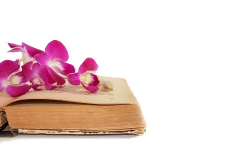 perfumer: Old book and Orchid on white background isolate