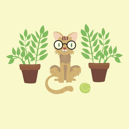 cat with a ball in glasses and a plant in a pot on a dark background
