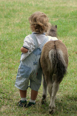 covers a small horse, pony boy Stock Photo