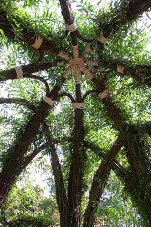 The cupola of a garden arbour.
