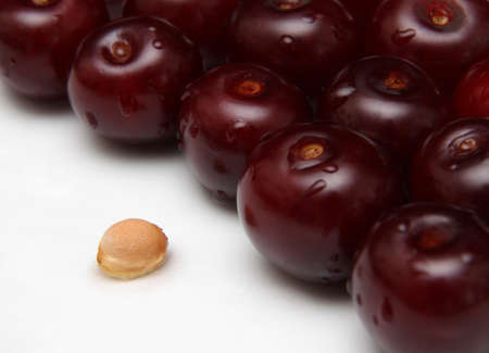 A group of cherries and a cherry seed.