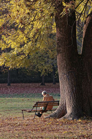 Retired grandmother relaxing under the trees in autumn.