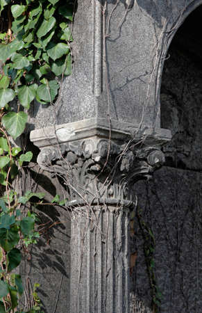 dilapidated: Overgrown with ivy old dilapidated columns detail.