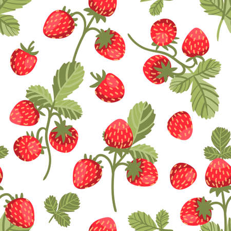 Seamless vector pattern wild strawberries on white background