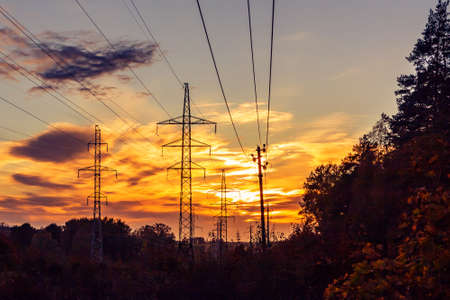 Power lines on the background of forest and sky at sunset