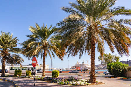 Palm trees on the embankment in the city of Muscat the capital of Oman