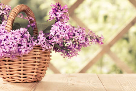 Basket with a bouquet of lilac flowers on a white wooden table in the summerhouse in the garden Reklamní fotografie
