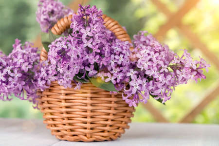 Basket with a bouquet of lilac flowers on a white wooden table in the summerhouse in the garden Imagens