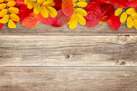 Borde de hojas de otoño sobre fondo de madera - una hermosa plantilla para una tarjeta de otoño o felicitaciones