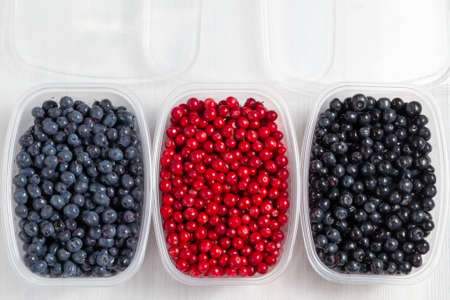 Berries laid out in containers and prepared for freezing and storage, top view