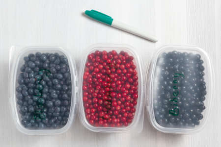 Berries laid out in containers, signed with a marker and prepared for freezing and storage, top view Zdjęcie Seryjne