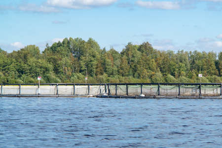Large fish tanks on the river, salmon fish farm