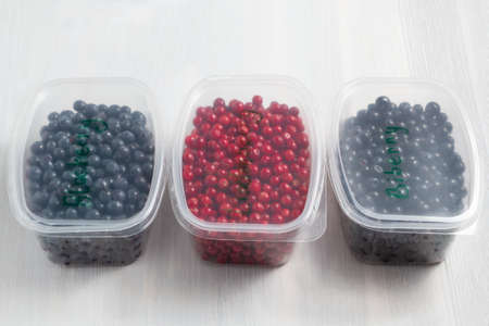 Berries laid out in containers and prepared for freezing and storage