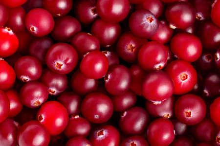 Fresh ripe ruby cranberries closeup, natural texture, background Stock fotó