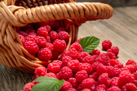 Ripe forest raspberries scattered from a small basket on a wooden table, close-up